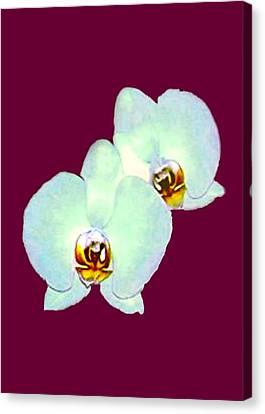 Orchid Art 5 Purple Zurich 2000 Jgibney The Museum Zazzle Gifts Canvas Print by jGibney