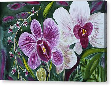 Canvas Print featuring the painting Orchid At Aos 2010 by Donna Walsh