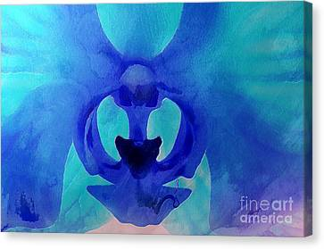 Orchid Blessing Canvas Print by Krissy Katsimbras