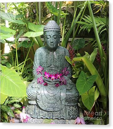 Orchid Buddha Canvas Print