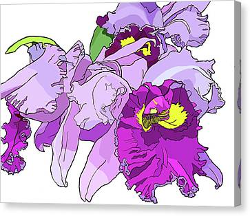 Orchid Cluster Canvas Print by Jamie Downs