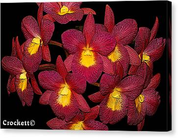 Canvas Print featuring the photograph Orchid Floral Arrangement by Gary Crockett
