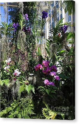 Orchid Greenhouse Canvas Print