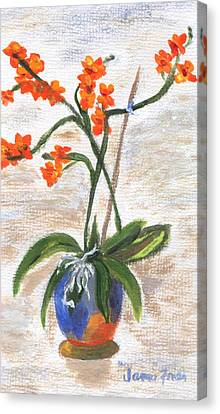 Canvas Print featuring the painting Orchid by Jamie Frier