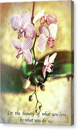 Orchid Love Canvas Print by Chellie Bock