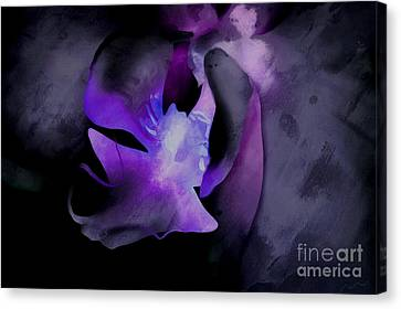 Orchid Of Faith Canvas Print by Krissy Katsimbras