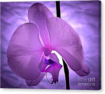 Orchid Of Serenity Canvas Print by Krissy Katsimbras