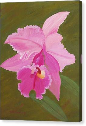 Orchid Canvas Print by Ruth  Housley
