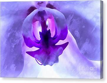 Orchid Soul Canvas Print