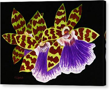 Canvas Print featuring the painting Orchids - Jumping Jacks With Black Background by Kerri Ligatich