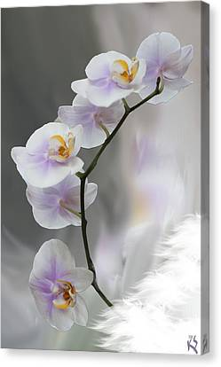 Orchids 2010 Canvas Print by Kevin  Sherf