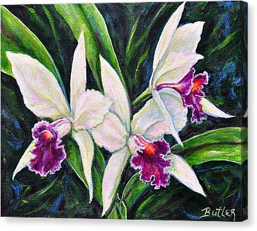 Orchids Canvas Print by Gail Butler
