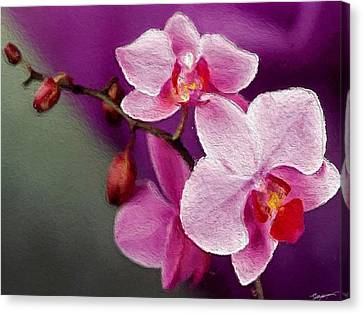 Orchids In Violets Canvas Print by Anthony Fishburne