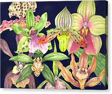 Orchids  Canvas Print by Lucy Arnold