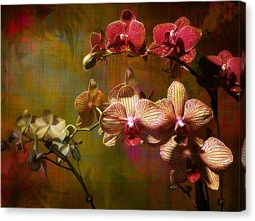 Canvas Print featuring the photograph Orchids On Silk by John Rivera