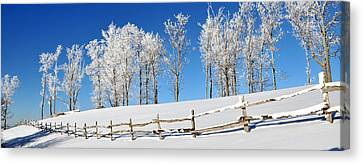 Ore Knob In Snow Panorama Canvas Print by Alan Lenk