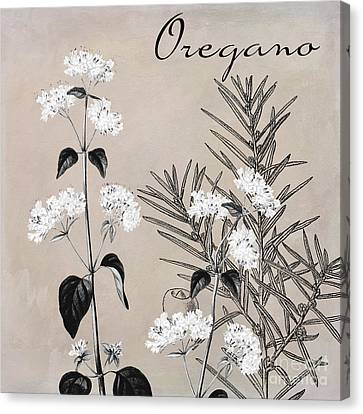 Oregano Flowering Herb Canvas Print by Mindy Sommers
