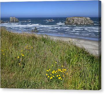 Canvas Print featuring the photograph Oregon Beauty by Wanda Krack