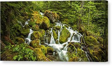 Oregon Cascades Canvas Print by Andrew Soundarajan