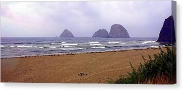 Oregon Coast 1 Canvas Print by Marty Koch