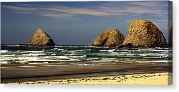 Oregon Coast 14 Canvas Print by Marty Koch