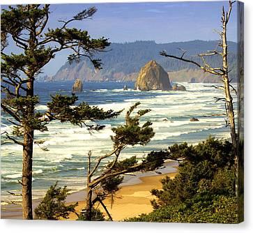 Oregon Coast 15 Canvas Print by Marty Koch