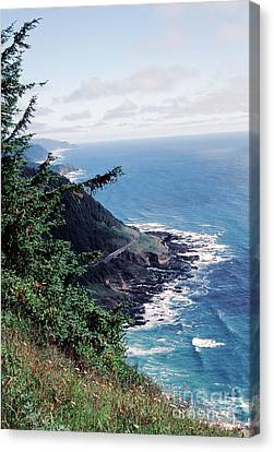 Oregon Coast 2 Canvas Print
