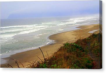 Oregon Coast 3 Canvas Print by Marty Koch