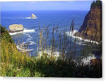 Oregon Coast 4 Canvas Print by Marty Koch