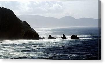 Oregon Coast 5 Canvas Print by Marty Koch