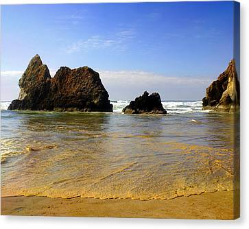 Oregon Coast 9 Canvas Print by Marty Koch