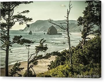 Oregon Coast At Sunset Canvas Print