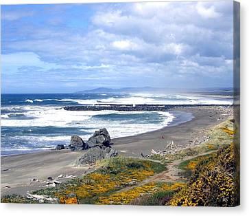 Oregon Coast Canvas Print by Will Borden
