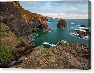 Canvas Print featuring the photograph Oregon Coastal Scenic by Leland D Howard