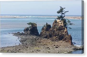 Cost Line Canvas Print - Oregon Cost Rock-2 by James Adger