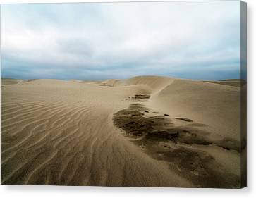 Oregon Dune Wasteland 1 Canvas Print by Ryan Manuel