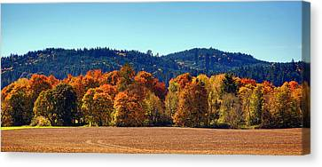 Oregon Fall Canvas Print