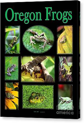 Canvas Print - Oregon Frogs by Nick Gustafson