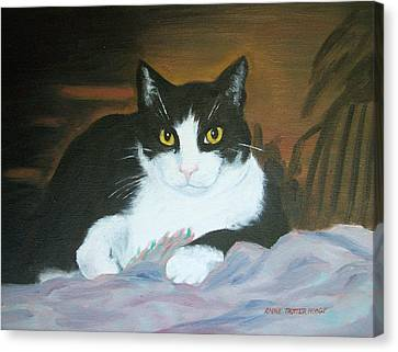 Oreo Canvas Print by Anne Trotter Hodge