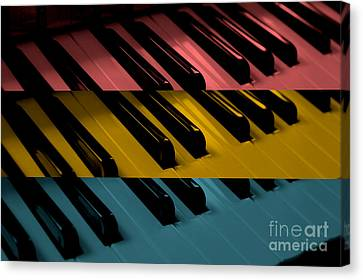 Organ Keys Pop Art Canvas Print by Teresa Thomas