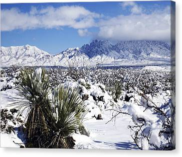 Canvas Print featuring the photograph Winter's Blanket Organ Mountains by Kurt Van Wagner