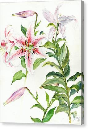 Oriental Lily Mona Lisa Liliaceae Canvas Print