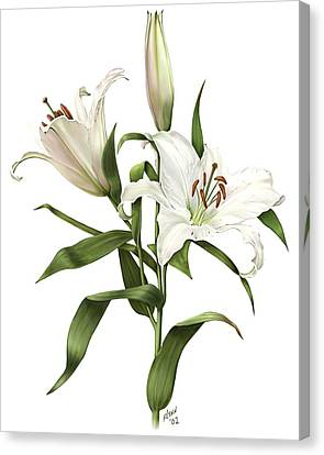 Oriental Lily Siberia Canvas Print by Artellus Artworks