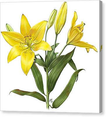 Oriental Lily Yellow Canvas Print by Artellus Artworks