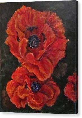 Oriental Poppys  Canvas Print