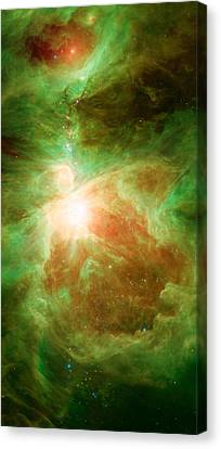 Orion Constellation Canvas Print by American School