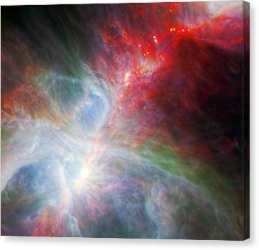 Orion Nebula Canvas Print by American School