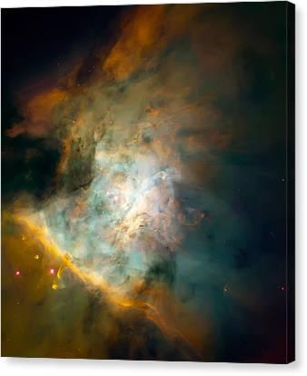 Orion Nebula Mosaic  Canvas Print by Jennifer Rondinelli Reilly - Fine Art Photography