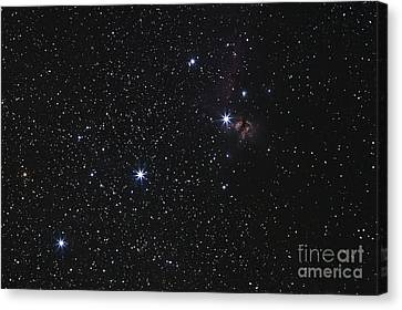 Orions Belt, Horsehead Nebula And Flame Canvas Print by Luis Argerich