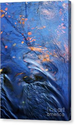 Orisha Canvas Print by Joanne Baldaia - Printscapes